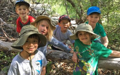 Summer Camp- Wild Explorers