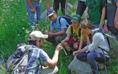 Summer Camp- Highlands Adventurists