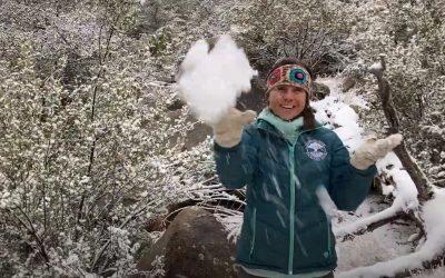 Fresh Air Moments: Snowflakes