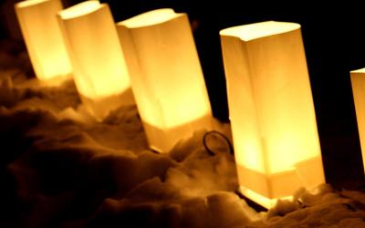 Winter Luminaria Member's Night