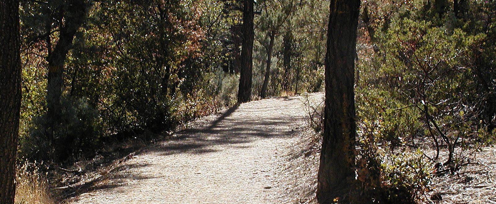 Highlands Nature Camps