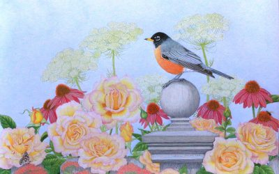 Colored Pencil Drawing Series