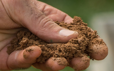 Fresh Air Moments: What's the Scoop on Soil?