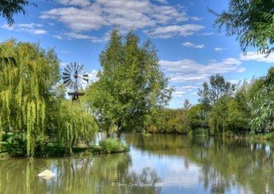 windmill-house-pond